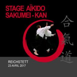 stage-aikido-sakumei-kan-aikikai-avril-2017-reichstett-strasbourg