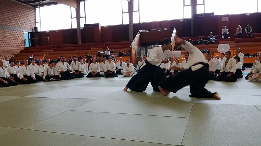 stage-2017-aikido-kobayashi-yukimitsu-sakumei-kan-aikikai-strasbourg-reichstett