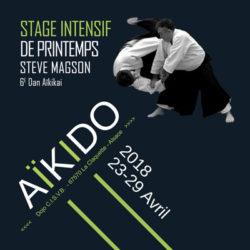aikido-printemps-2018-steve-magson-68-grand-est-reichstett