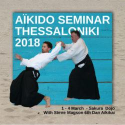 seminar-2018-sakura-dojo-greece-reichstett-67