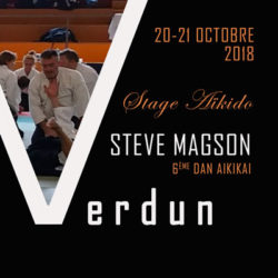 stage-aikido-steve-magson-55-belgique-nancy-luxembourg