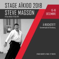 http://aikido-reichstett.com/wp-content/uploads/2018/10/stage-aikido-reichstett-2018-steve-magson-grand-est-67-reichstett.jpg