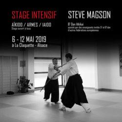 stage-aikido-2019-steve-magson-68-grand-est-reichstett-75
