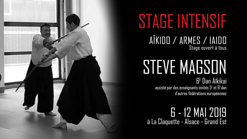 stage-intensif-2019-aikido-67-paris-eurometropole-strasbourg